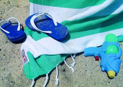 Cactus Lemonical Beach Towel