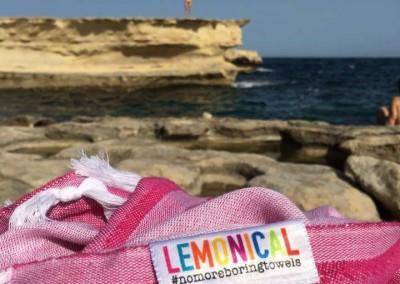 Pink Starfish Beachin' at Malta Coastline
