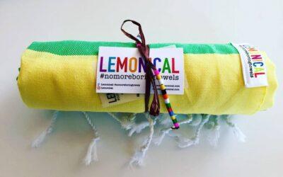Идеалният подарък – кърпа LEMONICAL